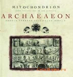 Mitochondrion - Archaeaeon (2008)