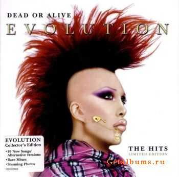 Dead Or Alive - Evolution: The Hits (Limited Edition) 2CD (2003) (Lossless) + MP3