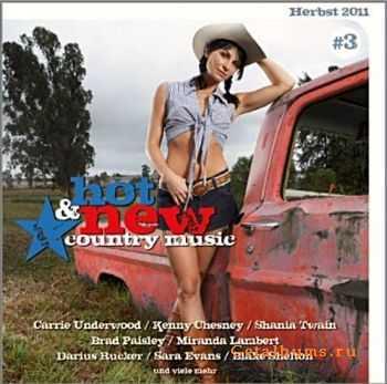VA - Hot & New Country Music Vol.3 (2011)