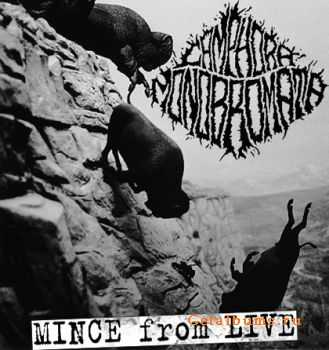 Camphora Monobromata - Mince From Live (2009 - 2011)