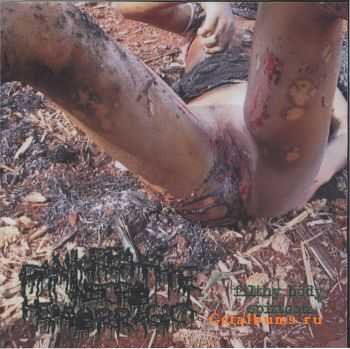 Pankreatite Necro Hemorragica - Filthy Body Spittoon (Demo) (2009)