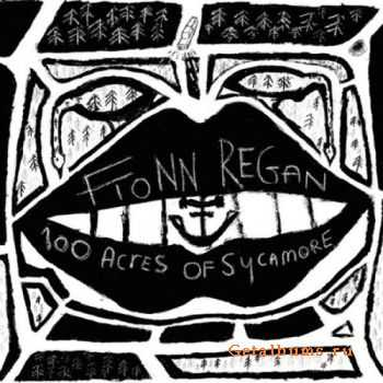 Fionn Regan - 100 Acres Of Sycamore (2011)