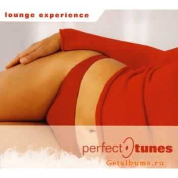 VA - Lounge Experience:Perfect-Tunes (2007)