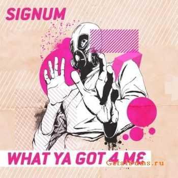 Signum - What Ya Got 4 Me (2011)