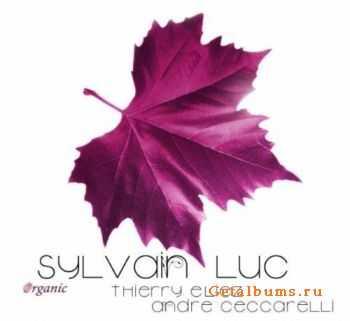 Sylvain Luc � Organic (2011)