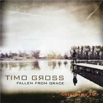 Timo Gross - Fallen from Grace (2011)