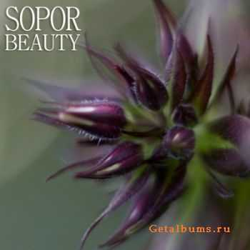 Sopor  - Beauty  (2011)