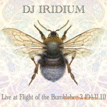 DJ Iridium - Live @ Flight of the Bumblebee 2 (2011)