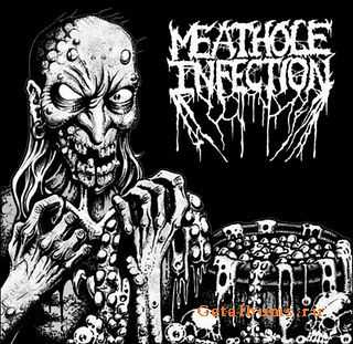 Necrovorous / Meathole Infection - Split (2009)