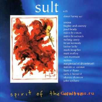 VA - Spirit of the Music (1996)