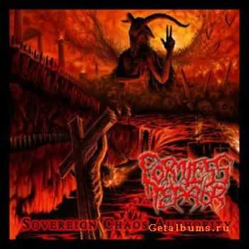 Formless Terror - Sovereign Chaos Authority (2011)