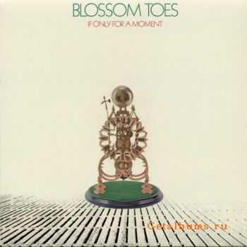 Blossom Toes - If Only For A Moment - 1969 (2007)