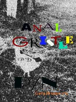 P/N - Anal Gristle (2011)