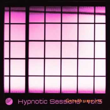 VA - Hypnotic Sessions Vol.5 (2011)