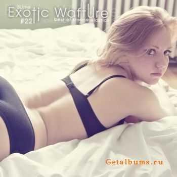 VA - Exotic Wafture #22 (2011)