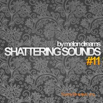 VA - Shattering Sounds #11 (2011)