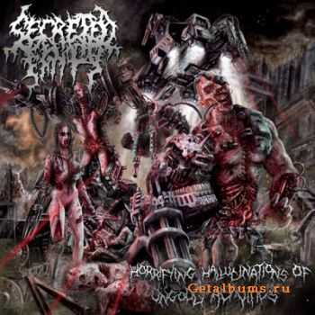 Secreted Entity - Horrifying Hallucinations Of Ungodly Activities (2012)