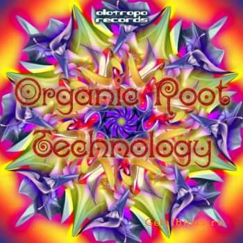 VA - Organic Root Technology (2011)