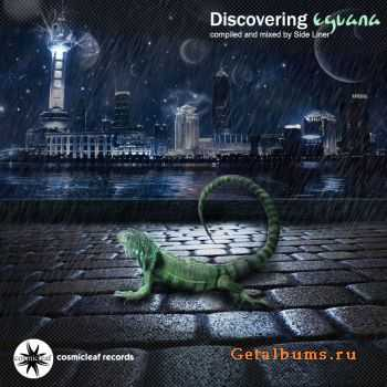 Eguana - Discovering Eguana (Cosmicleaf Records 2012) (20  January  2011)