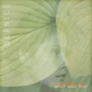 Bernice - What Was That (2011)