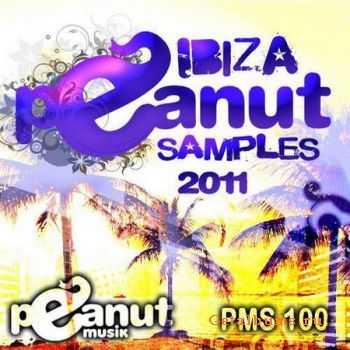 VA - Ibiza Peanut Samples 2011