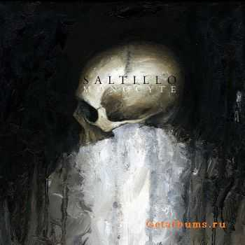 Saltillo - Monocyte (2012)