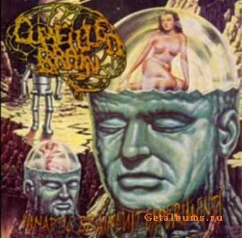 Cumfilled Brain - Synaptic Brainlust Experiments (2009)