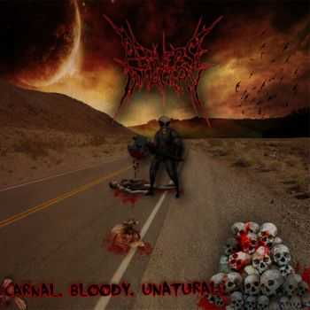 Perverse Imagery - Bloody, Carnal, Unatural [EP] (2012)