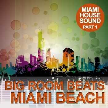 VA - Big Room Beats In Miami Beach (Miami House Sound Part 1) (2012)