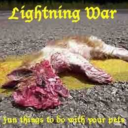 Lightning War - Fun Things to do with your Pets (2005)