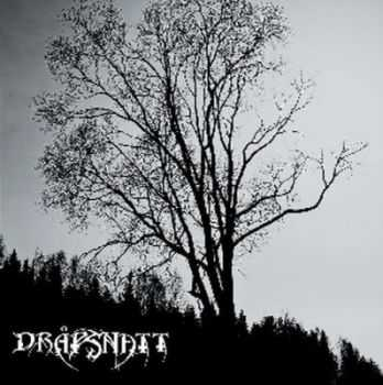 Drapsnatt - Skelepht (2012)