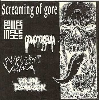 Engulfed In Flies / Purulent Vagina / Brutal Decomposition / Gonotoxemia - Screaming Of Gore [Split] (2011)