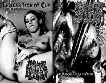 Cyanide Ejaculation / Myiasis - Endless Flow of Cun / Maggot Debridement [split] (2010)
