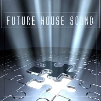 VA - Future House Sound (2012)
