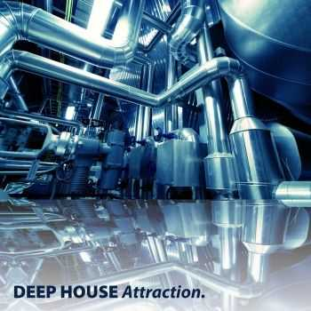 VA - Deep House Attraction (2011)