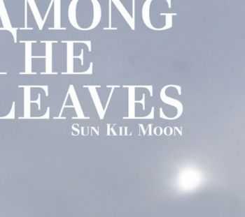 Sun Kil Moon - Among The Leaves (2012)