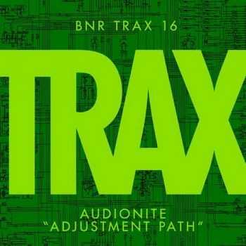 Audionite - Adjustment Path (2012)