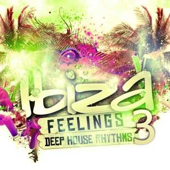 VA - Ibiza Feelings Vol. 3 (Deep House Rhythms)(2011)