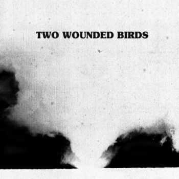 Two Wounded Birds - Two Wounded Birds (2012)