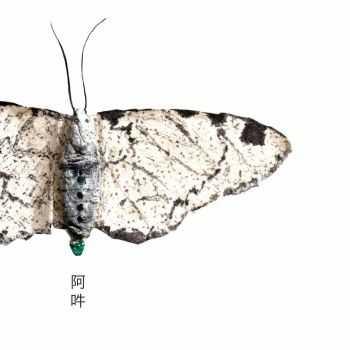 Fennesz - AUN (2012)