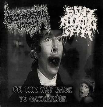 Decomposing Vomit & Sick Fucking Shit - On The Way To Catherine (Split) (2010)