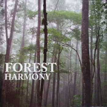 Songs Of The Earth - Forest Harmony (2004)