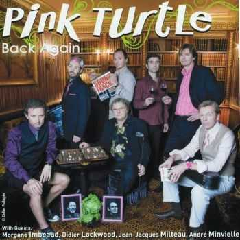 Pink Turtle - Back Again (2010) HQ
