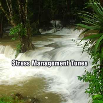 Stress Management Tunes (2012)