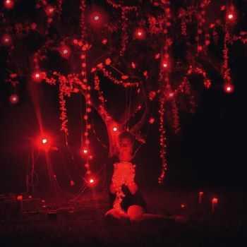 Sophie Hunger - The Danger of Light (Deluxe Edition) (2012)