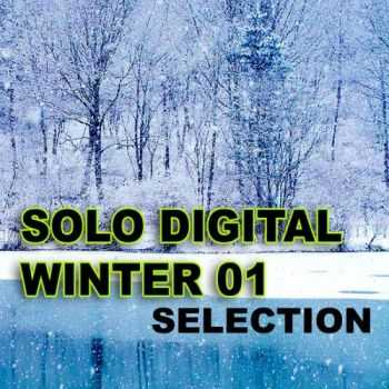VA - Solo Digital Winter Selection 1 (2012)