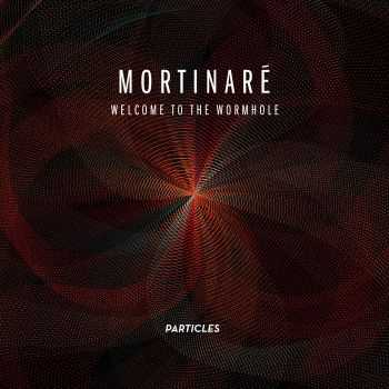 Mortinaré - Welcome To The Wormhole (2012)