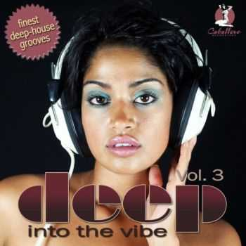 VA - Deep Into The Vibe Vol 3 (2011)