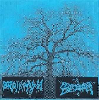 Brainwash / Permanent Death [Live/Split] (2005)