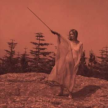 Unknown Mortal Orchestra - II (2012)